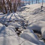"""Winterscape"" by Freezeframe"