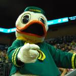 """Duck at Matt Arena"" by netbrands"
