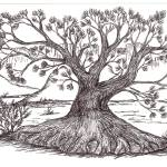 """""""Ageless Desert Pine"""" by Juliebear"""