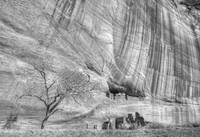 Ruins in the Cliff, Canyon de Chelly