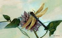 Dahlia with Dragonfly Resting