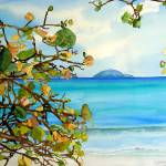 """Magens Bay, St. Thomas, USVI"" by kyaudeart"