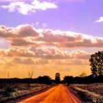 """rural road horizon"" by shindigenometry"