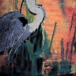 """02032011 Blue Heron"" by garlandoldham"