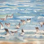 """Jekyll Birds"" by ClaraM"