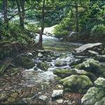 """Donaldson Creek, Spring Mill Park, Indiana"" by powellfineart"
