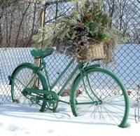 Ornamental Bicycle 1