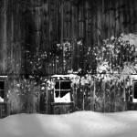 """Snow Blown Barn In Millbury Massachusetts"" by bavosiphotoart"