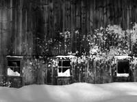Snow Blown Barn In Millbury Massachusetts