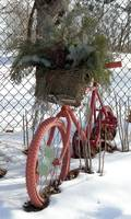 Ornamental Bicycle 2