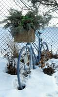 Ornamental Bicycle 3