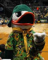 Hawaiin Urban Duck