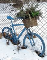 Ornamental Bicycle 4