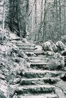 Steps to the mountain