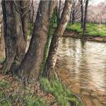 """Leatherwood Overflow"" by powellfineart"