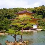 """""""Kinkaku-ji"""" by cwtrumpet"""