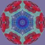 """BETA FISH kaliedoscope"" by pjaysart"