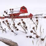 """""""Winter Barn II"""" by dkocherhans"""