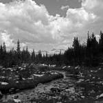 """Unicorn Creek and Rock Littered Meadow, B&W"" by jaredwcarter"