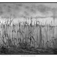 My Father's Field - Underdrawing Art Prints & Posters by Robert Girandola