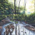 """Hidden Stream"" by powellfineart"