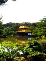 kinkakuji - temple of the golden pavilion