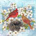 """Mating Cardinals"" by Sharon_himes"