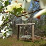 """A Swing in Tranquility"" by imagesbyjulie"