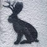"""""""rabbit moose graffitti"""" by jacunaxy"""