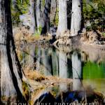 """hamilton pool feb-1-3 logo"" by JThomasDukePhotography"