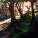 """Sun"" by RickNederlof"