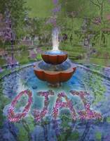Lavender Floating in a Fountain in Ojai