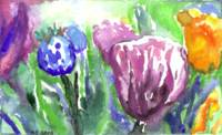Purple, Orange and Blue Tulips