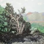 """Red Rockm Nevada"" by johnallgood"
