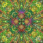"""""""Terra"""" by crayon"""
