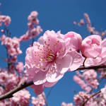 """Blue Sky Floral Pink Tree Blossoms Baslee Troutman"" by BasleeTroutman"