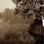 """""""Early misty morning V"""" by Francoistremblay"""