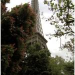 """Eiffel tower - One side."" by Basilea"