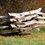 """Split Rail Fence"" by lwbhoosier"