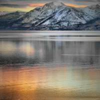 Tahoe Lights Art Prints & Posters by Barbara Brown