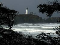 Yaquina Winter