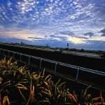 """01 - CCP - San Lazaro Leisure Park Race Track OTS"" by JRRodriguezIV"