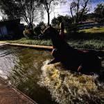 """54 - CCP - San Lazaro Leisure Park Race Track OTS"" by JRRodriguezIV"