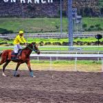"""22 - CCP - San Lazaro Leisure Park Race Track OTS"" by JRRodriguezIV"