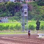 """21 - CCP - San Lazaro Leisure Park Race Track OTS"" by JRRodriguezIV"