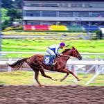 """28 - CCP - San Lazaro Leisure Park Race Track OTS"" by JRRodriguezIV"
