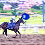 """20 - CCP - San Lazaro Leisure Park Race Track OTS"" by JRRodriguezIV"