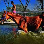 """50 - CCP - San Lazaro Leisure Park Race Track OTS"" by JRRodriguezIV"