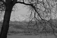 Longs Peak and Mt Meeker Twin Peaks BW Image