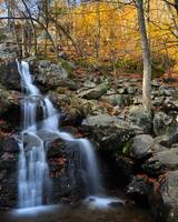 Dark Hollow Falls in Autumn